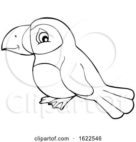 Puffin Bird by visekart