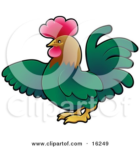 Green Rooster With A Brown Head And Red Comb, Using His Wing To Point To The Left Clipart Illustration by AtStockIllustration