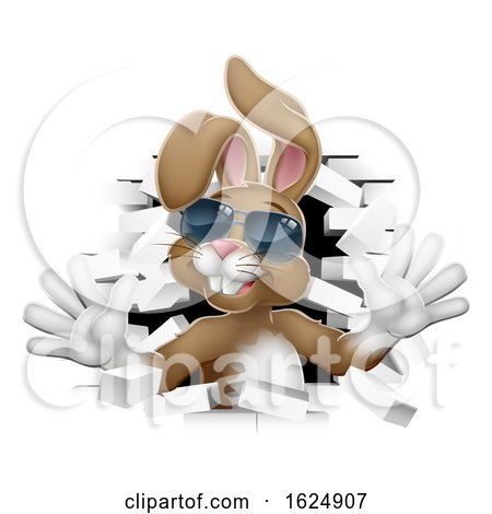 Easter Bunny Rabbit in Shades Coming Through Wall by AtStockIllustration