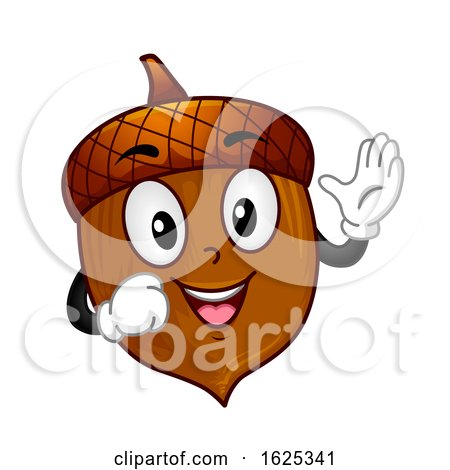 Mascot Acorn Illustration by BNP Design Studio
