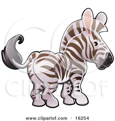 Adorable White And Brown Zebra With Pink Ears Clipart Illustration by AtStockIllustration