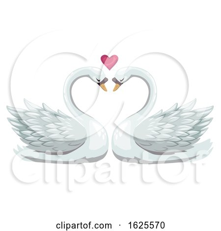 Swan Pair and Valentine Heart by Vector Tradition SM