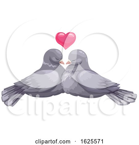 Pigeon Pair and Valentine Heart by Vector Tradition SM