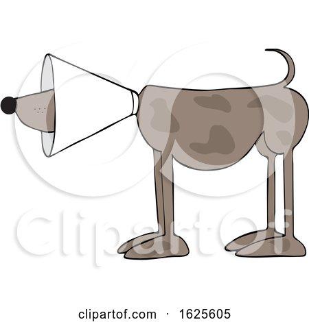 Cartoon Brown Dog Wearing a Cone by djart