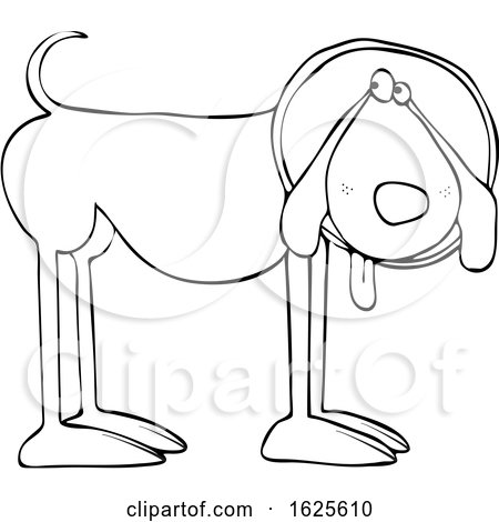 Cartoon Black and White Dog Wearing a Cone by djart