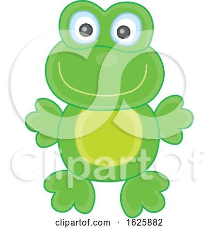 Toy Frog by Alex Bannykh