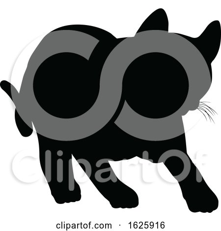 A Cat Silhouette by AtStockIllustration