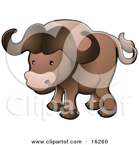 Cute Brown African Buffalo (Syncerus Caffer), Also Known As The Cape Buffalo Clipart Illustration by AtStockIllustration