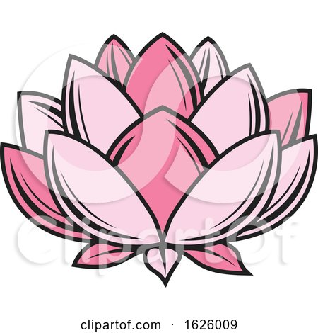 Pink Lotus by Vector Tradition SM
