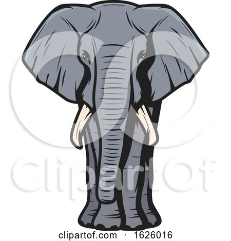 Elephant by Vector Tradition SM