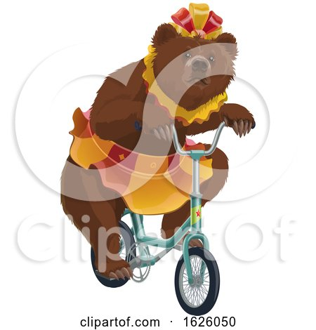 Circus Bear Riding a Bicycle by Vector Tradition SM
