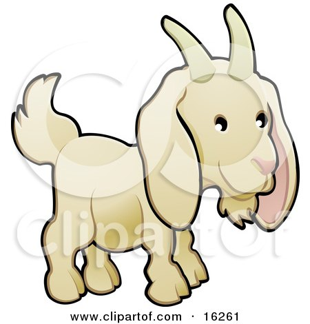Adorable White Goat With Horns On His Head Clipart Illustration by AtStockIllustration