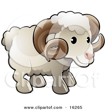 Adorable White Male Sheep, A Ram, With Brown Curly Horns Clipart Illustration by AtStockIllustration