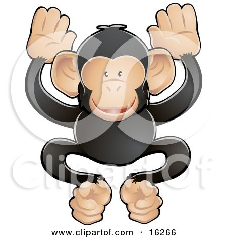 Adorable Black And Tan Chimpanzee Monkey Being Friendly And Playful Clipart Illustration by AtStockIllustration