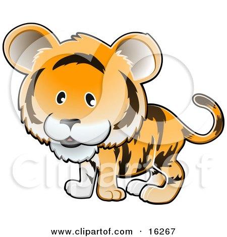Adorable Orange Tiger With Black Stripes  Posters, Art Prints