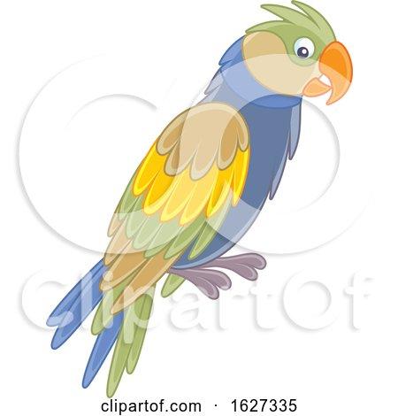 Parrot by Alex Bannykh