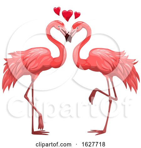 Valentines Day Flamingo Couple with Hearts by Vector Tradition SM
