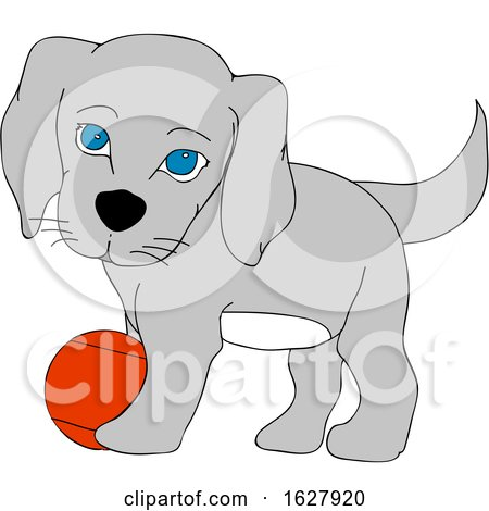 Cute Puppy Dog Playing with a Ball by elaineitalia