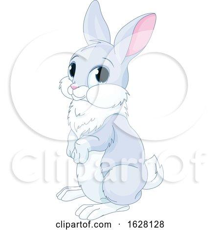 Cute Bunny Rabbit by Pushkin