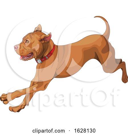Cute Playful Pit Bull Dog Running by Pushkin