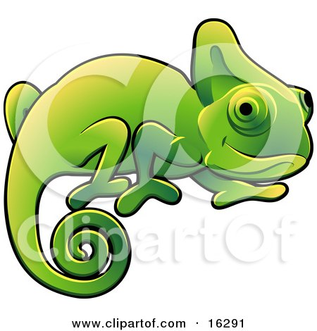 Happy Green Chameleon Lizard With A Curled Tail Clipart Illustration Image Posters, Art Prints
