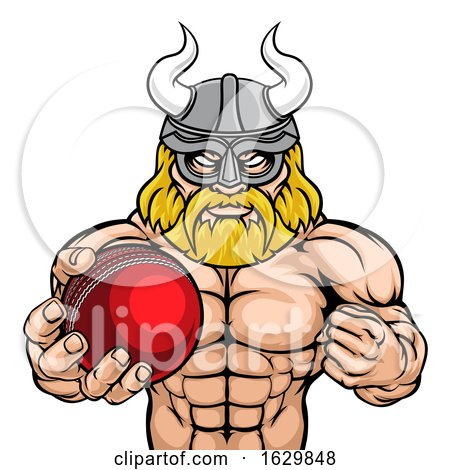 Viking Cricket Sports Mascot by AtStockIllustration