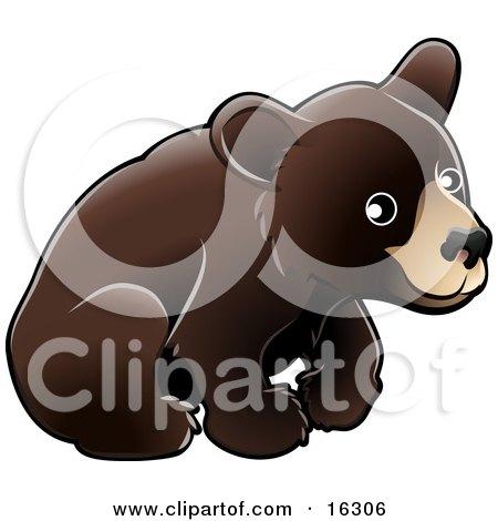 American Black Bear Cub (Ursus Americanus) Sitting Over A White Background Clipart Illustration Image by AtStockIllustration