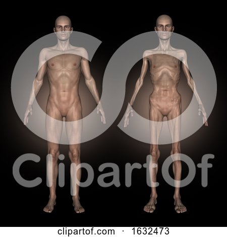 3D Medical Image Showing Male at Healthy and Unhealthy Weight by KJ Pargeter