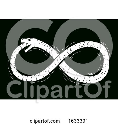 Ouroboros Infinity Illustration by BNP Design Studio