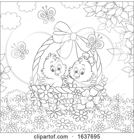 Black and White Spring Chicks in an Easter Basket Posters, Art Prints