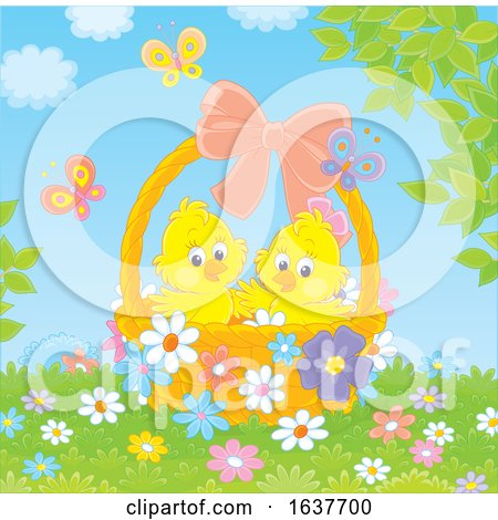 Spring Chicks in an Easter Basket Posters, Art Prints