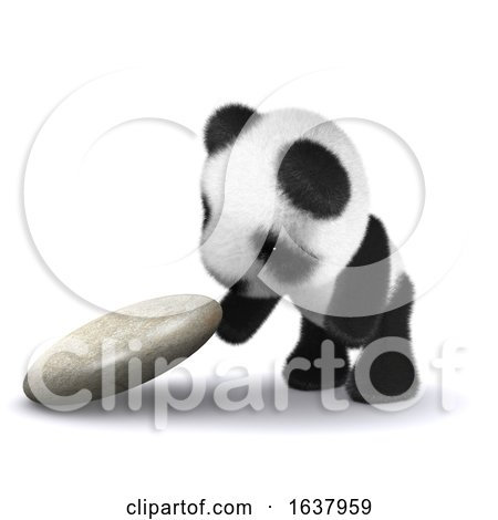 3d Baby Panda Explores, On a White Background by Steve Young