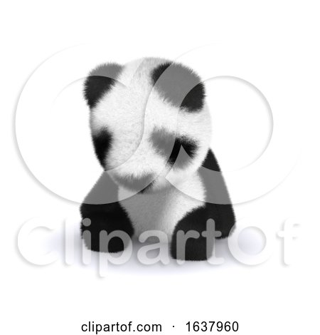 3d Sleepy Panda, On a White Background by Steve Young