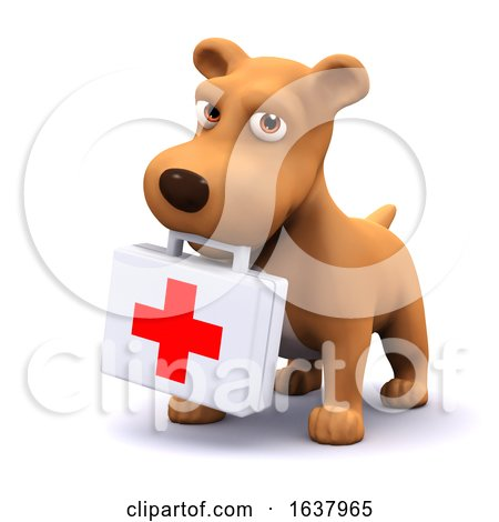 3d Puppy Medic, On a White Background by Steve Young