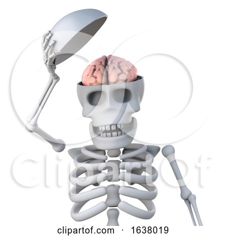 3d Skeleton Reveals His Brain, On a White Background by Steve Young