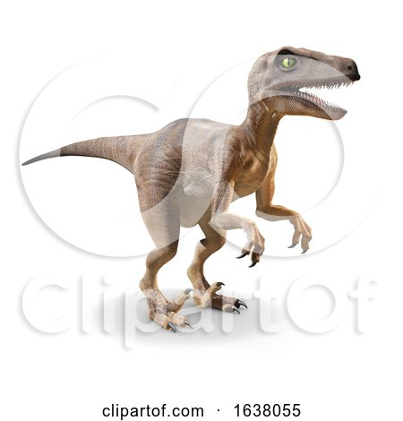 3d Velociraptor Dinosaur, On a White Background by Steve Young