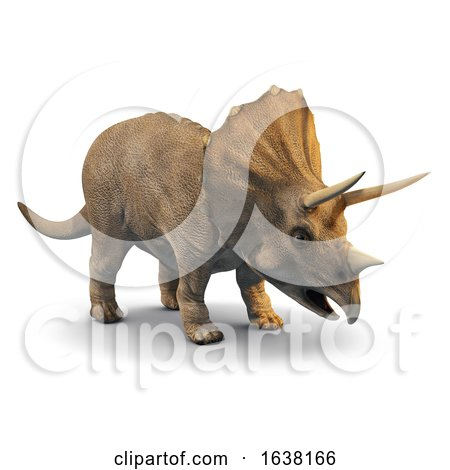 3d Triceratops, On a White Background by Steve Young