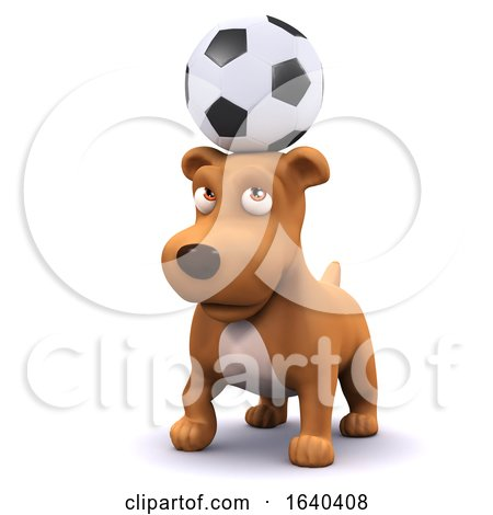 Funny Cartoon 3d Puppy Dog Balancing Football on Head by Steve Young
