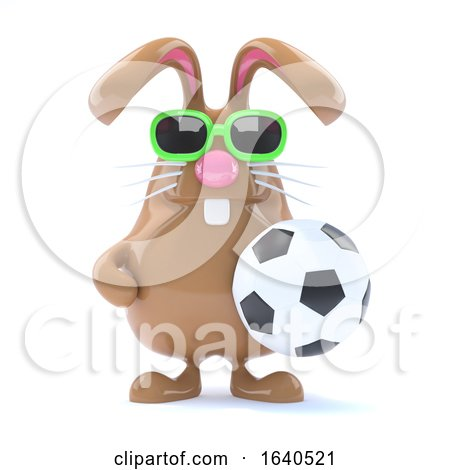3d Rabbit Football Star by Steve Young