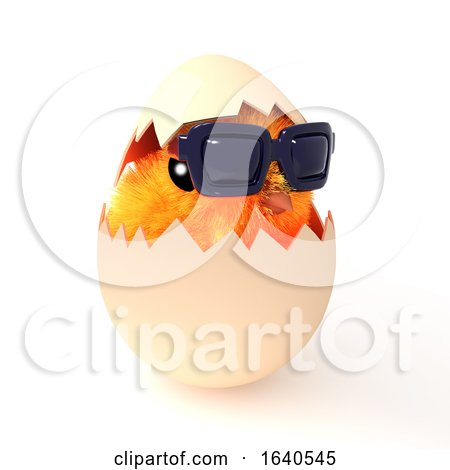 3d Easter Chick Hatches Wearing Sunglasses Posters, Art Prints