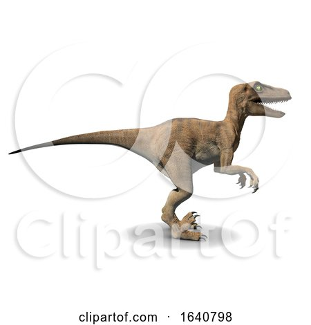 3d Velociraptor by Steve Young