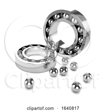 3d Chrome Bearings Disassembled by Steve Young