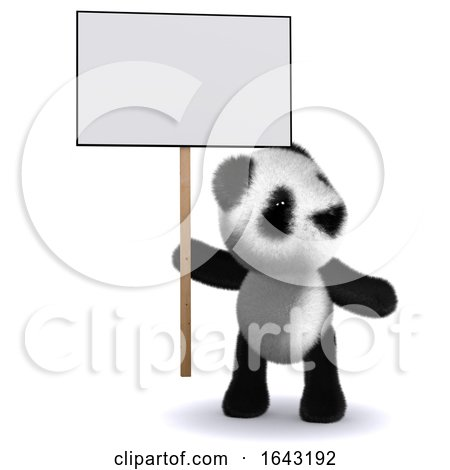 3d Baby Panda Bear with a Placard by Steve Young