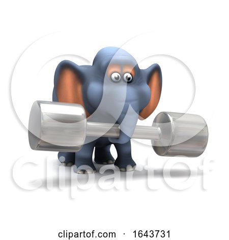 3d Elephant Works out by Steve Young