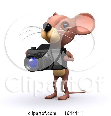 3d Mouse Has a Camera by Steve Young