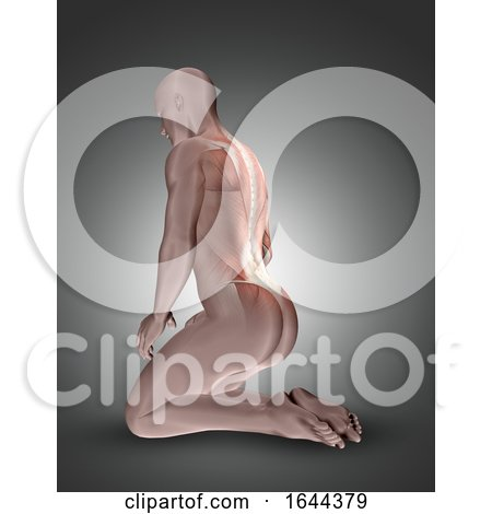 3D Kneeling Male Figure with Back Muscles Highlighted by KJ Pargeter
