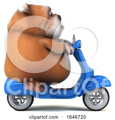 3d Bulldog Riding a Scooter, on a White Background by Julos