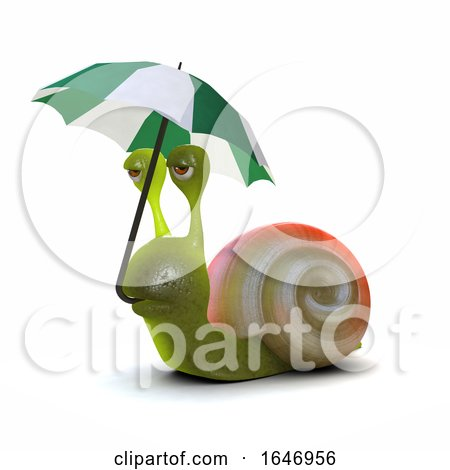 3d Snail Umbrella by Steve Young