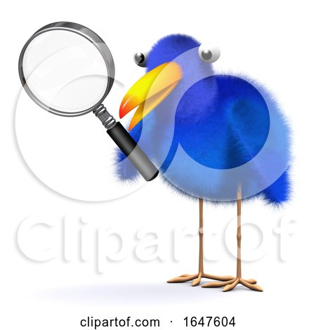 3d Bluebird with Magnifying Glass by Steve Young