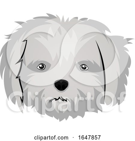 Maltese Dog Face by Morphart Creations